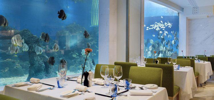 海藍海洋主題餐廳(亞龍灣迎賓館店)2