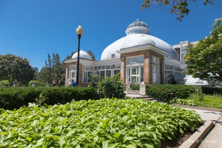 Allan Gardens Conservatory1