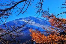 富士山不仅看雪,最美的是瑰丽金秋 富士山——是日本国内的最高峰,海拔3775.63米,被誉为是日本国