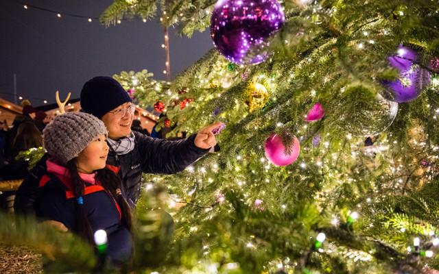 梦幻圣诞,瑞士亲子之旅