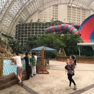 成都国际会展中心旅游景点攻略图