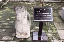 杨贵妃墓景