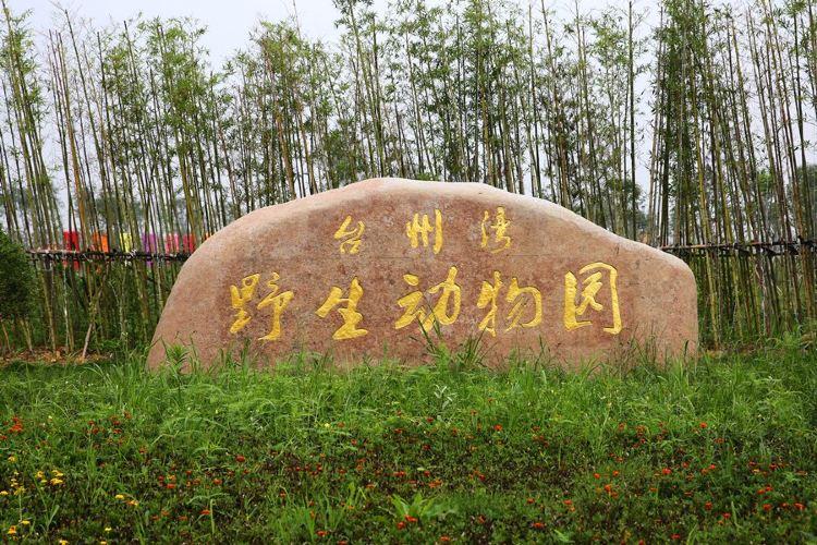 타이저우 야생동물원4