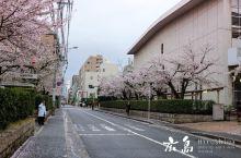 广岛高松冈山——日本冷门地之行