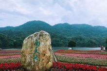 广州从化石门森林公园