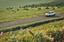 内蒙古太远?来张北草原,近距离感受草原风情!