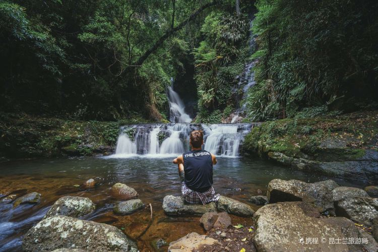 Lamington National Park2