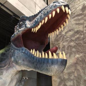 中国古生物博物馆旅游景点攻略图
