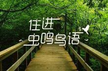 九月踏秋,这些民宿让你分分钟刷爆朋友圈,最低人均¥200!