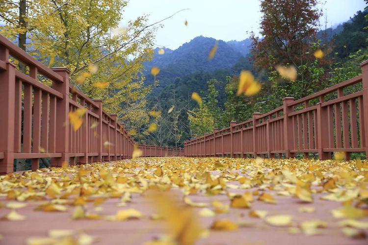 Mt. Ya Scenic Park