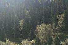 随手拍(那拉提大草原) 置身于美丽无垠的那拉提大草原,除去尽情地欣赏大自然的美景,敞开心肺呼吸大草原