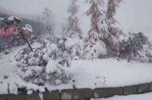 神农架海拔2500海拔以上下雪啦