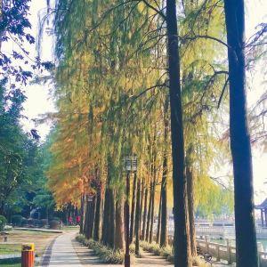 福州国家森林公园旅游景点攻略图
