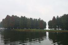 丹山赤水一日游