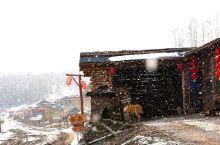 长白山锦江村——探秘中国最后的木屋村