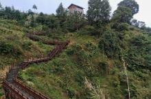 兴义何应钦故居:民国传奇 何应钦故居地处贵州兴义城南部45千米的峰林、石林之中的集镇泥凼,是已故国民