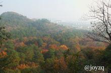 天平山……秋之韵
