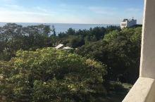 济州岛新罗大酒店