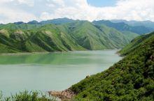 #向往的生活#新疆塔西草原马兰花盛开