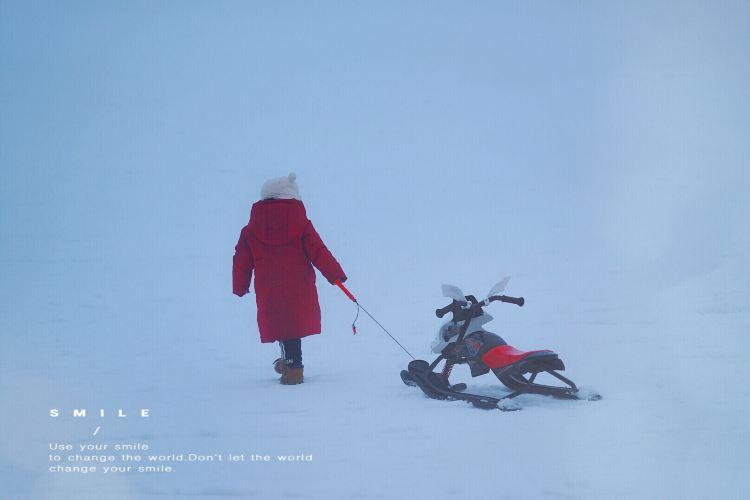 상량강 스키 리조트3