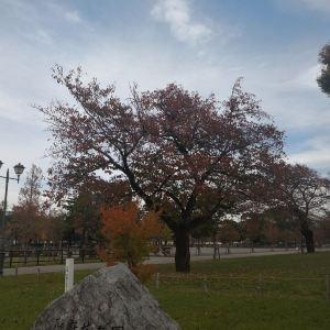 駿府城公園旅游景点攻略图