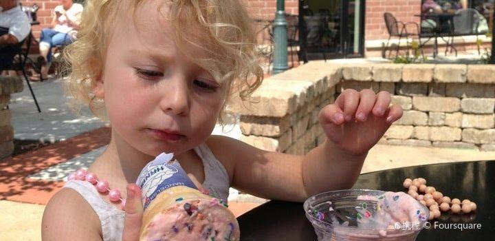 Handel's Homemade Ice cream2