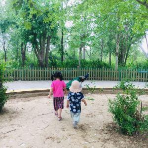 黄河三角洲动物园旅游景点攻略图