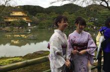 日本:樱花季行走在日本