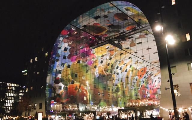 阿姆斯特丹你+鹿特丹(二),给你不一样的欧洲体验