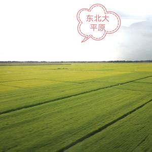 沈阳游记图文-乘高铁闯关东、看东北三省城、游漠河穿草原