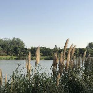 淡水河红树林自然保留区旅游景点攻略图