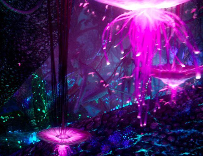 Pandora - The World of Avatar3