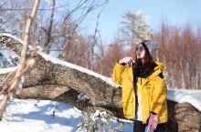 2020年第一次旅行:在吉林北大湖滑雪,遇见最美雾凇雪景!