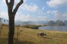 大美普者黑系列之十一国家湿地公园(上)