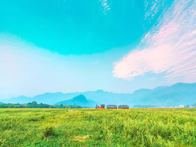 Dajiuhu National Wetland Park