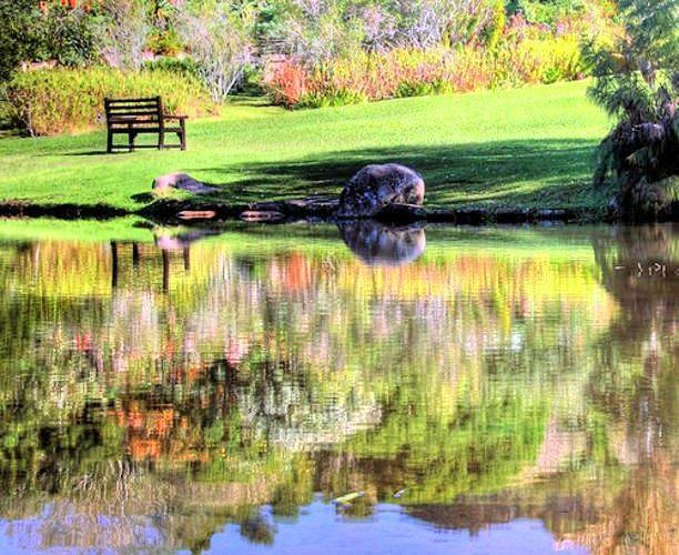 康斯坦博西植物園
