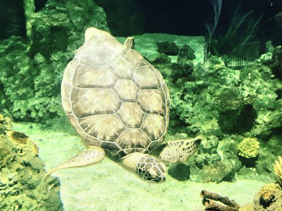 Pittsburgh Zoo & PPG Aquarium