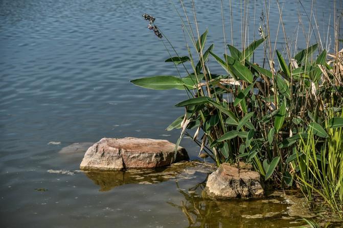 从荒郊野岭到城市公园,一处经开区休闲地,无心插柳却成小西湖 – 宁国游记攻略插图7