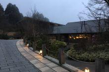 箱根温泉之旅