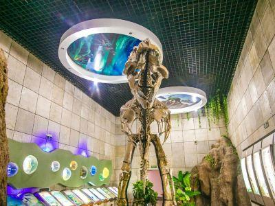 주청공룡박물관
