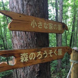 珈琲 森の時計旅游景点攻略图