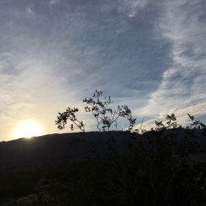 约书亚树国家公园旅游景点攻略图