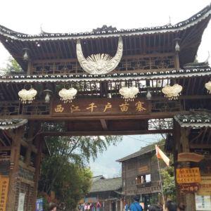贵州森林野生动物园旅游景点攻略图