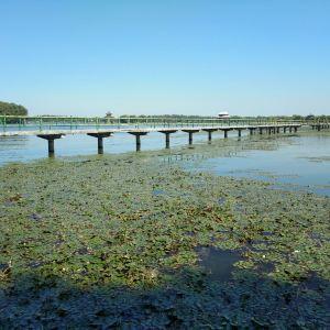 五里湖生态湿地公园旅游景点攻略图