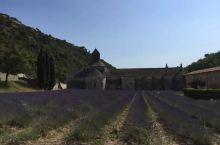 法国普罗旺斯 塞南克修道院