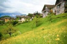 瑞士小镇施皮茨