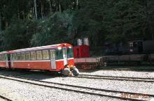 阿里山窄轨小火车