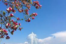 四月春天的日内瓦湖美丽如画