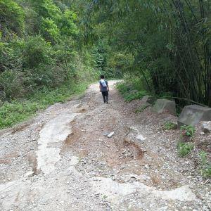 紫江地缝旅游景点攻略图