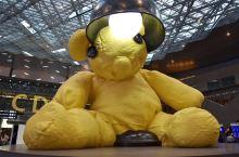 卡塔尔 多哈机场 世界上最大的公仔熊